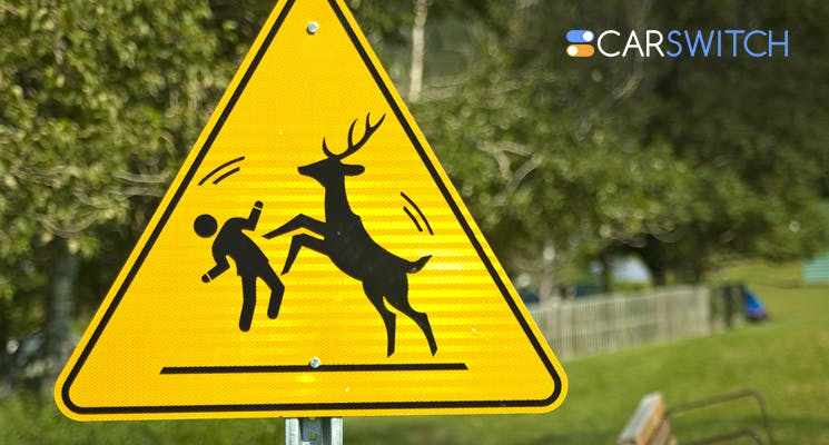uae car lovers check out these unusual road signs around the world