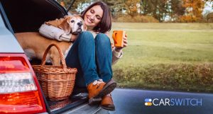 5 Best Cars to Travel with Your Dog in Dubai, UAE!
