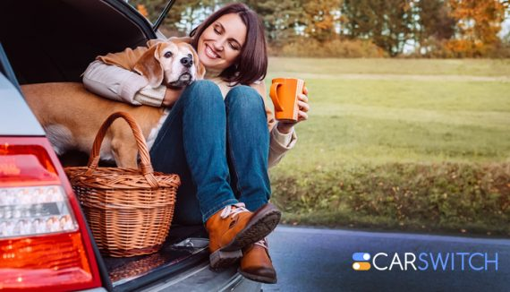 5 best cars to travel with your dog in Dubai, UAE